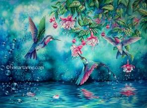 Hummingbirds and Bubbles