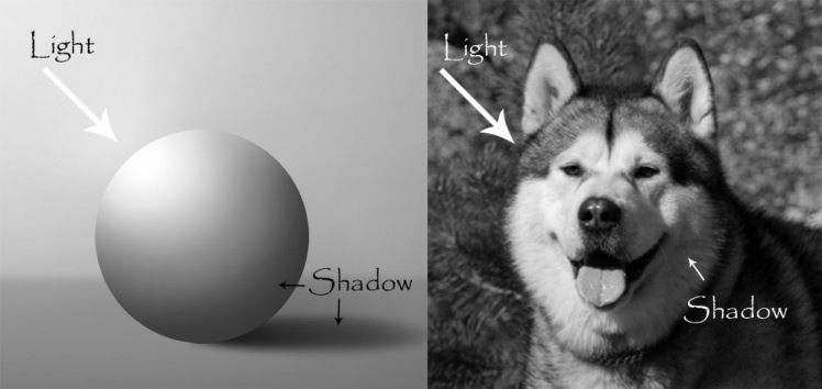 light-shadow