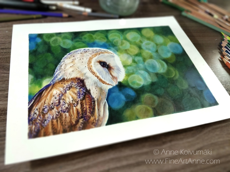 Barn Owl-Fine Art Anne