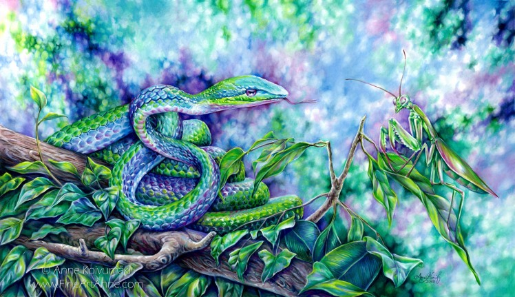 Snake and praying mantis - Anne Koivumaki - Fine Art Anne